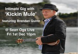 Brendan Quinn & Kickin' Mule, Gweedore